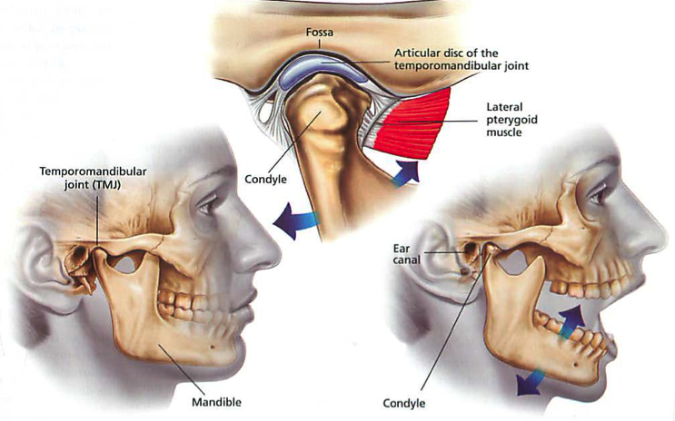 jaw inury caused by motor vehicle accident